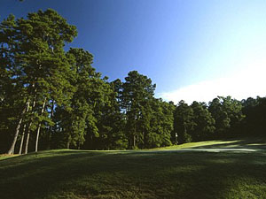 Rusk Golf at its Finest - Birmingham Forest Golf Club